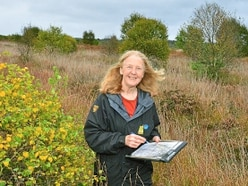 Species not seen in 90 years spotted in Shropshire nature reserve project