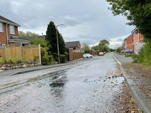 Sewage in Fernhill Lane, Gobowen