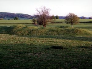 Earthworks are often the only trace – this is Corfham Castle, just south of Diddlebury.