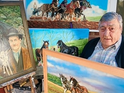 'Never look a gift horse in the mouth' - Shrewsbury artist's picture offer
