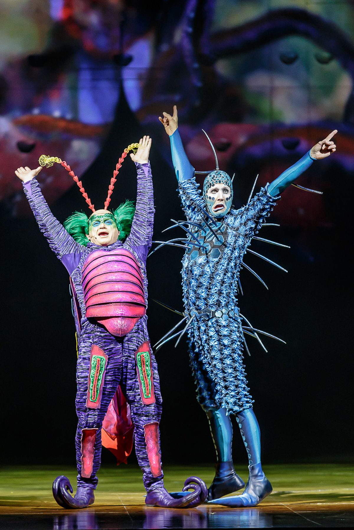Cirque du Soleil OVO. Pictures by: Chris Bowley
