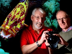 Newport photographer focusses lens on underwater creatures