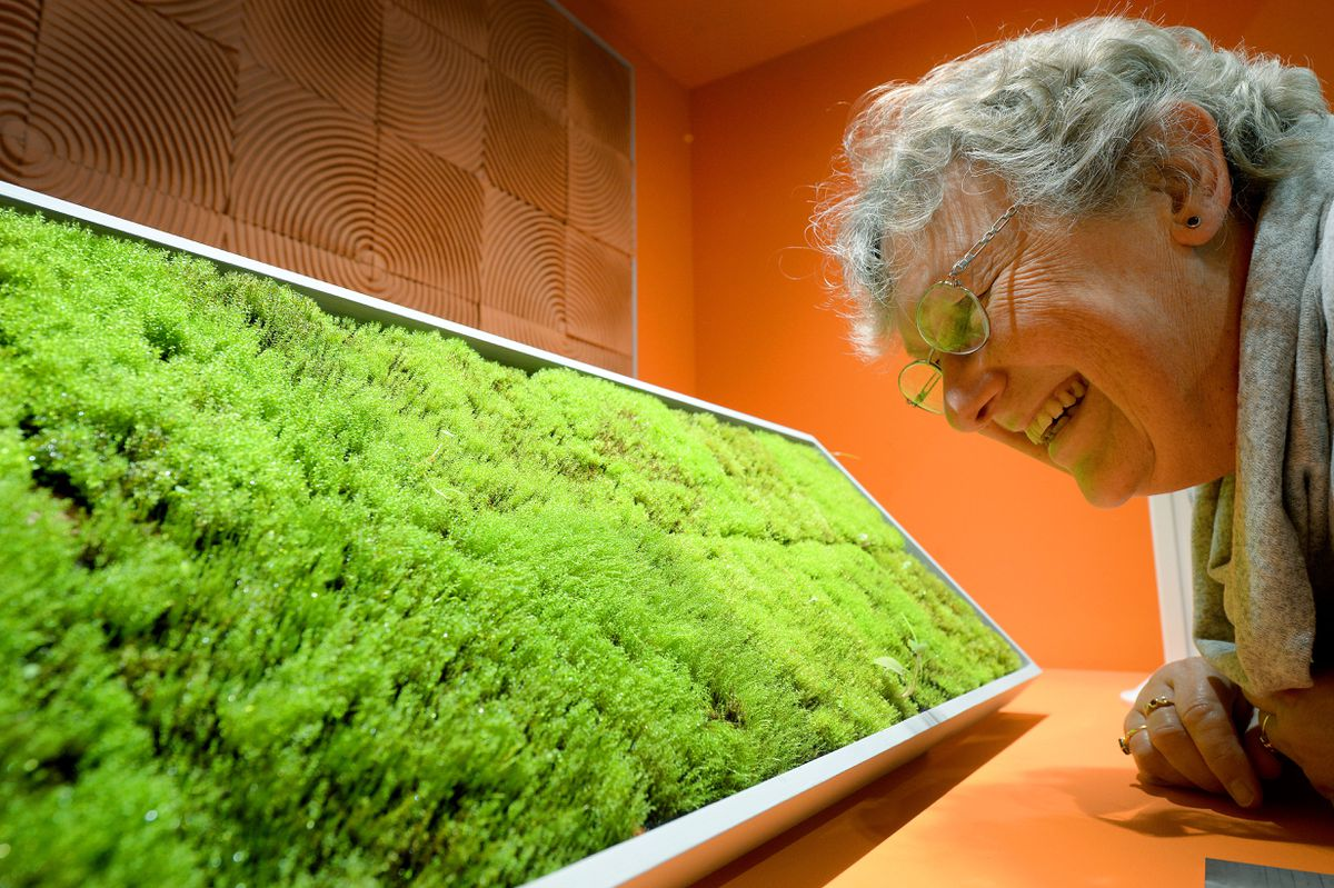 Kim Hughes, from Worcester learns how tiles can be made from moss