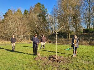 A tree has been planted in Telford Town Park as a tribute to all communities from all faiths who have been impacted by Covid-19