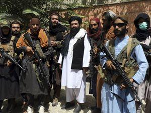 Taliban – how many British fans?