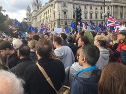 Shropshire protestors join London demo urging government to halt Brexit