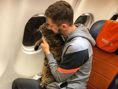 Passenger loses 370,000 air miles after smuggling overweight cat on to flight