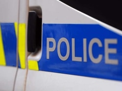 Two suspected pit bulls seized by police in Mid Wales