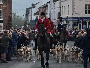 The Tanatside Hunt in Welshpool. Picture: Vanessa Thomas