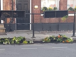 Fury as Newport floral contest plants are ripped out
