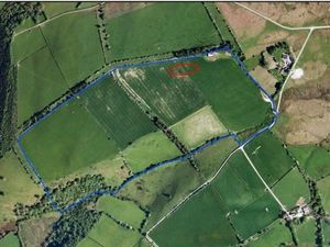 Forest Farm Llanbister where the hen egg laying units would be from Google Earth.