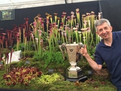 Insect-eating plant display wins top gong at Shrewsbury Flower Show