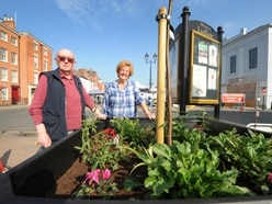 Trees will grow in memory of Ludlow resident