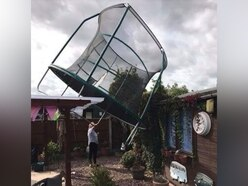 Storm Ali: Trees down and trampoline uprooted as high winds batter Shropshire
