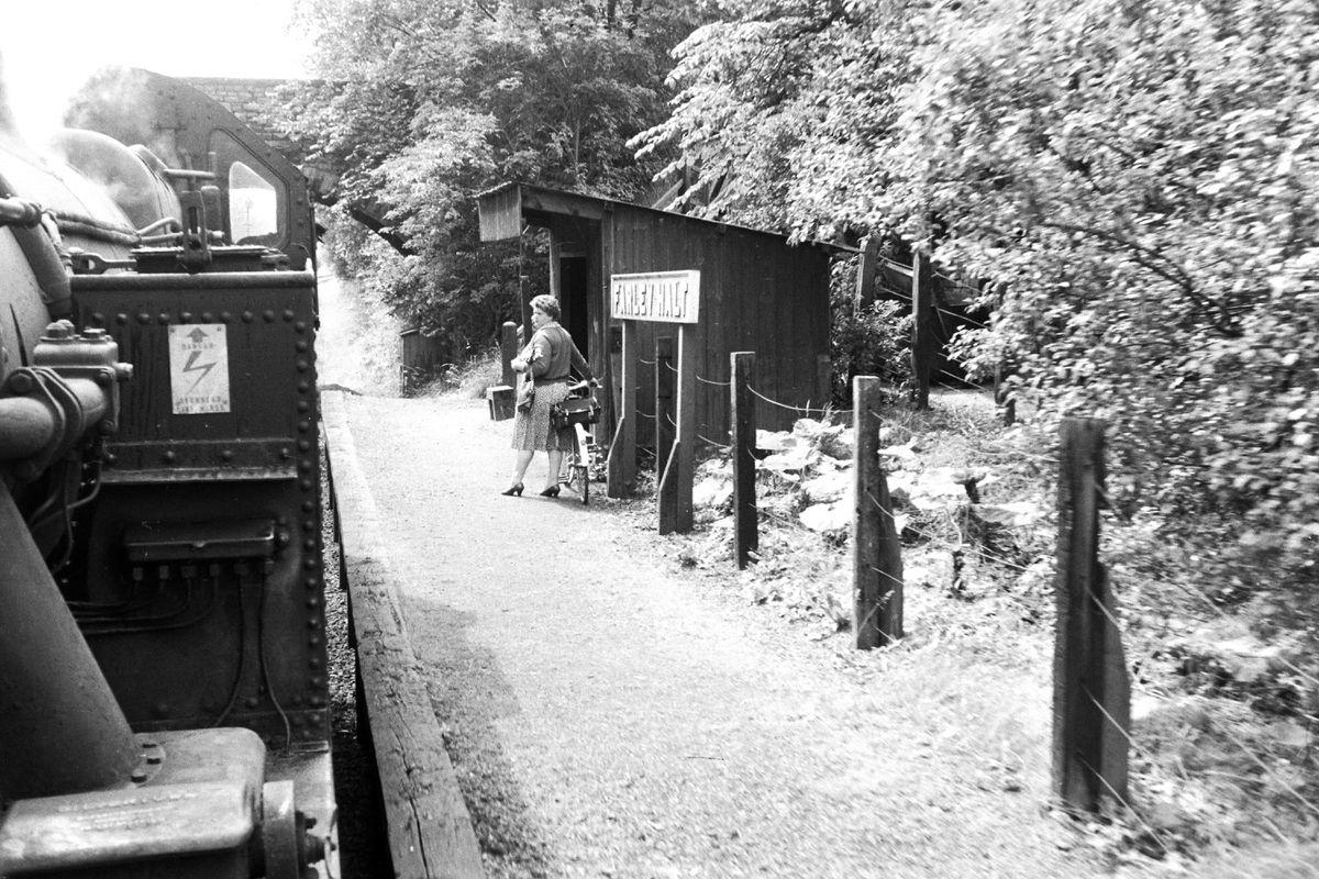 Even some small communities had their own halt – this is Farley Halt, near Much Wenlock.