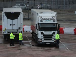 Lorries in the Department of Agriculture, Environment and Rural Affairs (DAERA) site in Duncrue Street, near Belfast port, which is one of the sites when lorries roll off the ferries to get checked