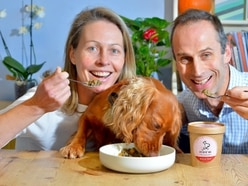 A dog's dinner! Meet the Shropshire company featured at this year's Crufts at Birmingham NEC