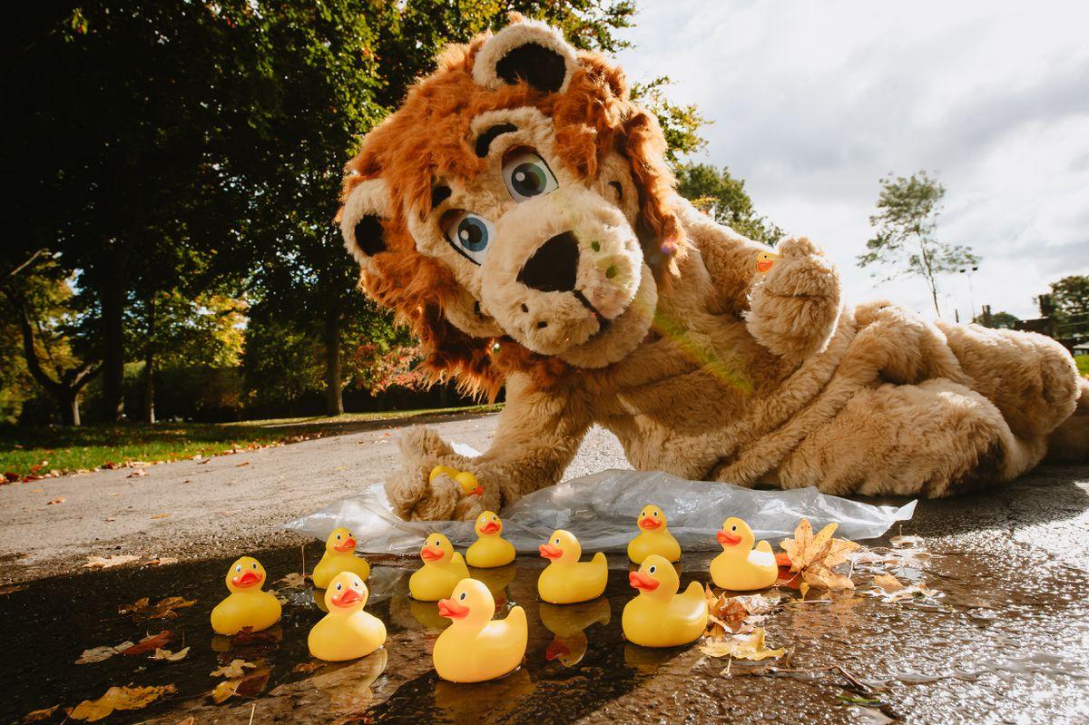 Lenny the Lion represents the Bridgnorth group's race