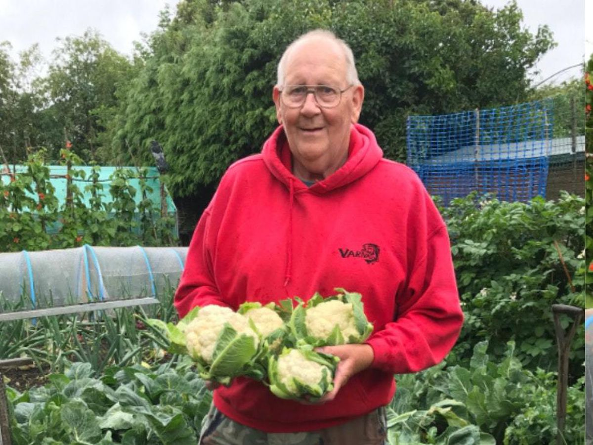 71-year-old goes viral for showing off his gardening skills