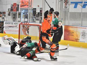 Tigers in action (Steve Brodie)