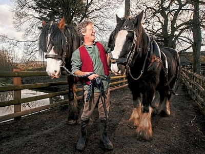 Neigh more work for pair as Shropshire tourist attraction seeks to replace shire horses Charlie and Joe