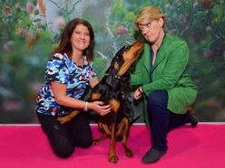 Crufts 2019: Highlights of day one at the Birmingham NEC event - with pictures and videos