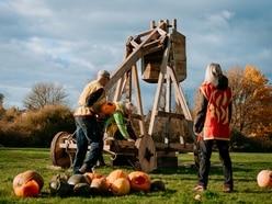 Pumpkins fly for their last hurrah in Ellesmere event
