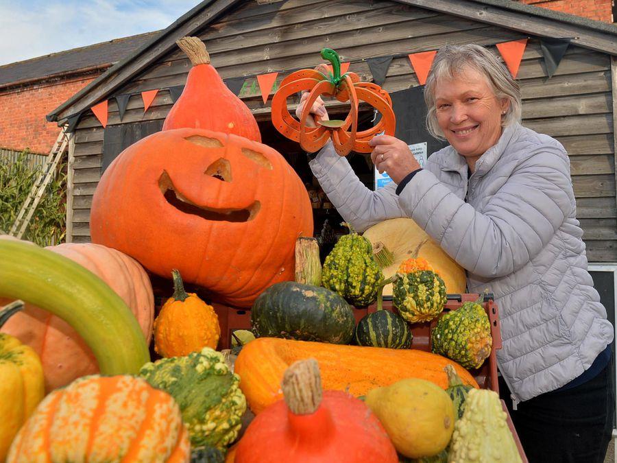 Lynda Jones from Llynclys Hall Farm is ready for a bumper pumpkin season