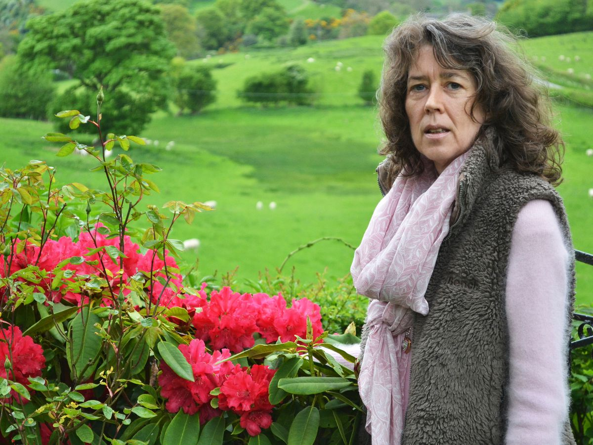 Angel Brain moved to Mid Wales to detox her life.