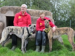 Dogs Trust Shrewsbury to bust myths about greyhounds and lurchers