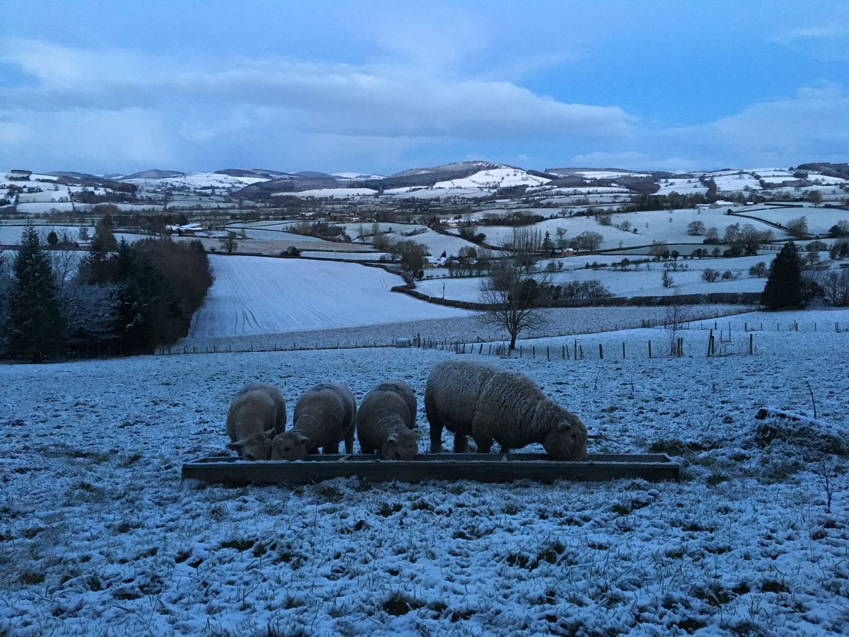 Stunning image form the Shropshire hills by Stu Gamble