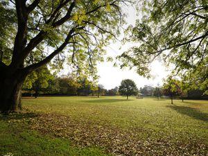 Cae Glas Park, Oswestry..