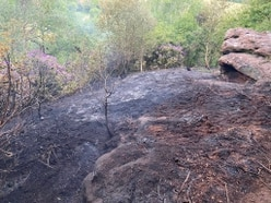Barbecue blamed for large woodland fire near Wem