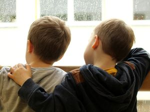 Shropshire Fostering children in the window