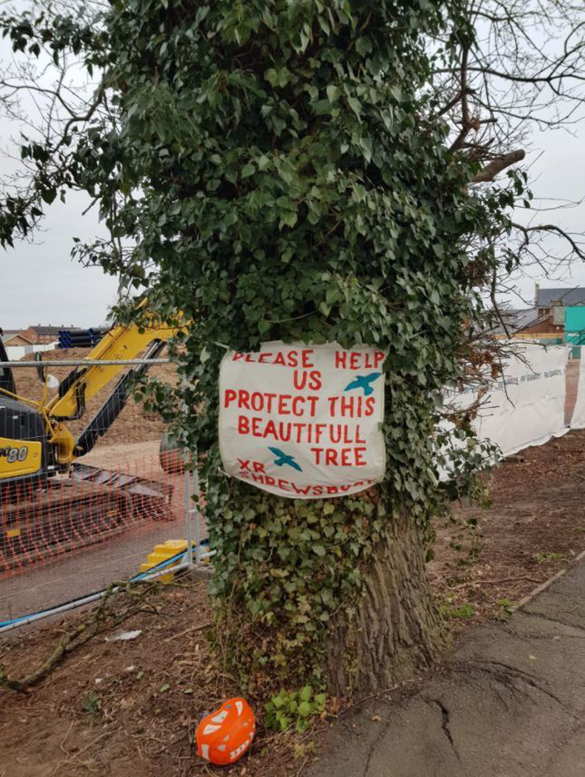 A sign on the tree in Harlescott