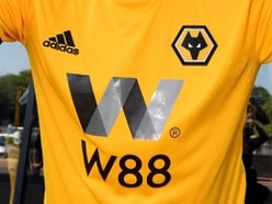 Wolves logo copyright claim thrown out leaving man with huge legal fees