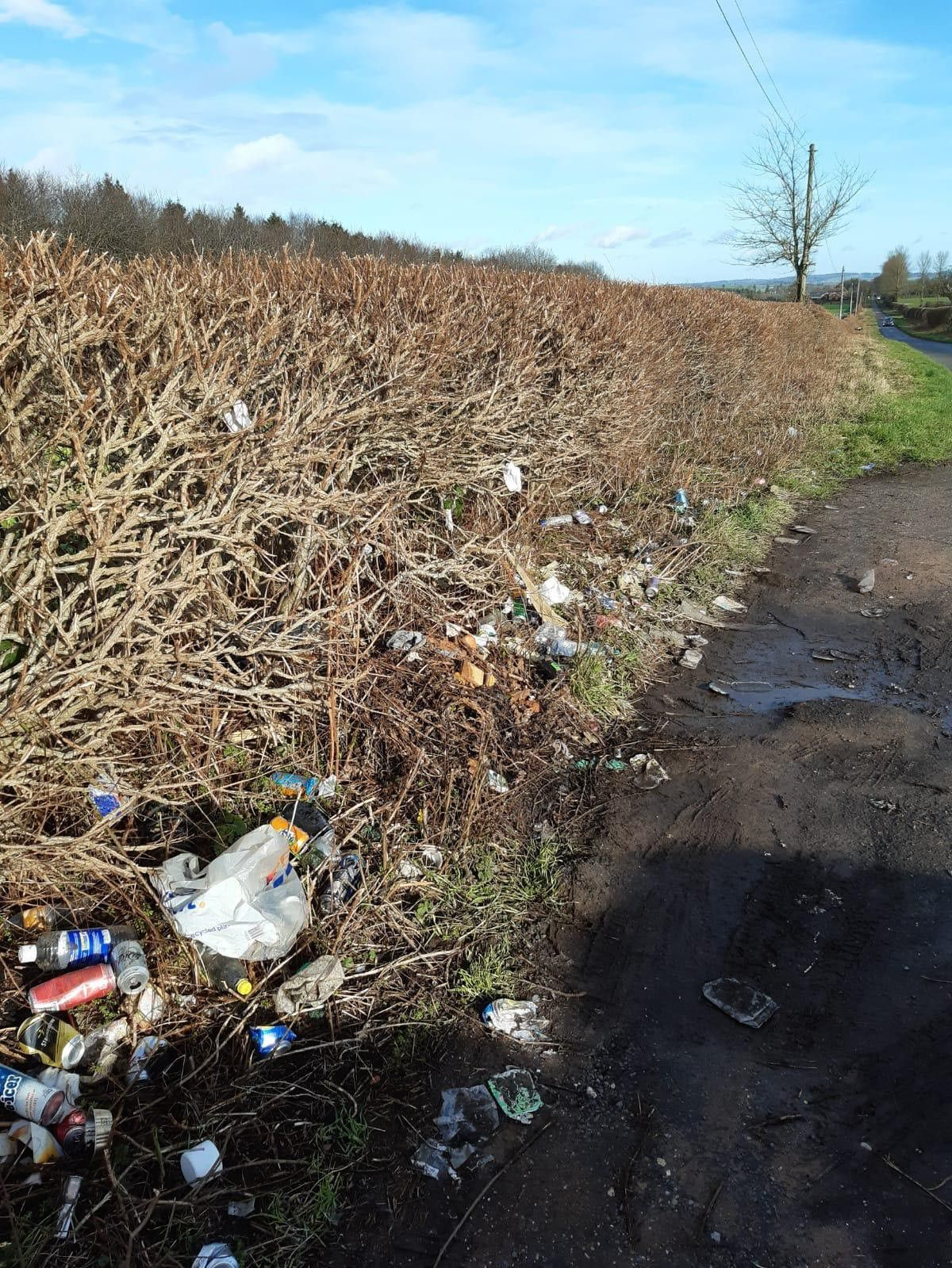 The amount of litter around Bridgnorth is growing, claim volunteers. Pictured is Cross Lane Head