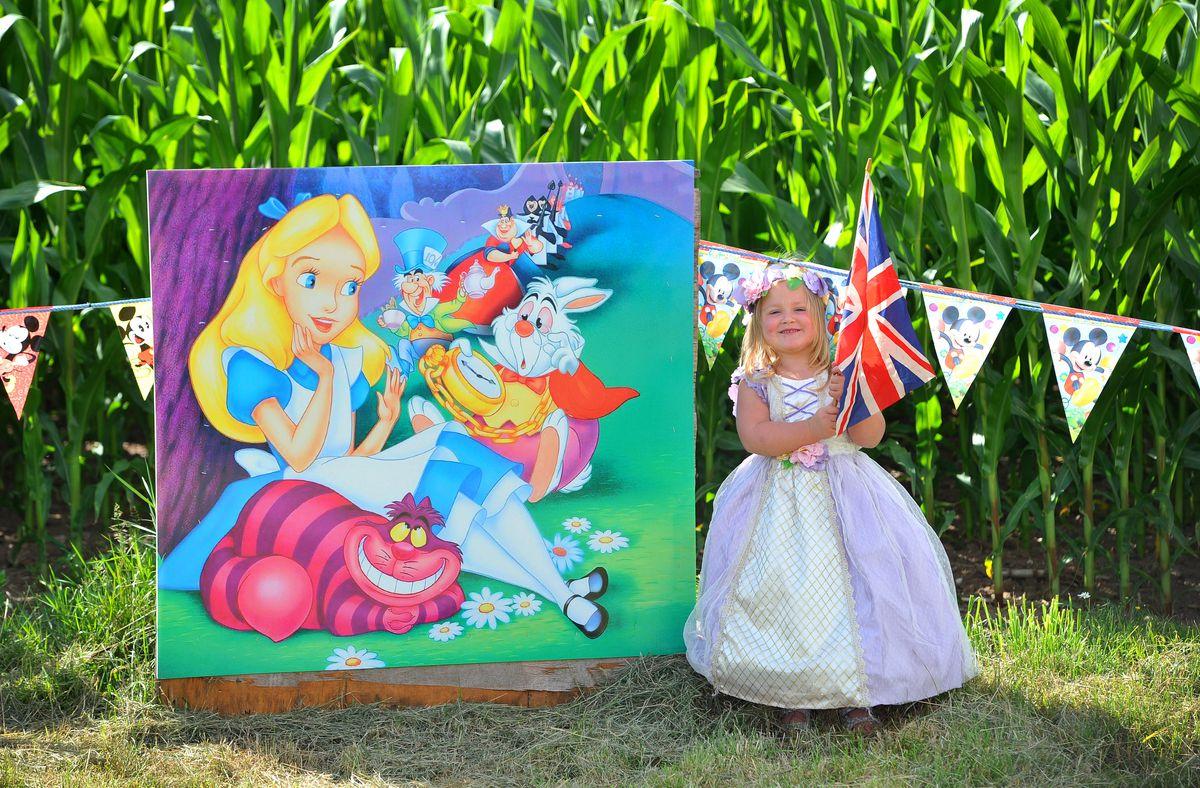 Disney princess Evangeline Beaumont, aged three, from Kinver, enjoys the new maze