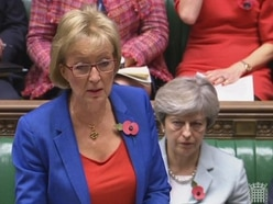 More can be done on PM's Brexit deal, says Andrea Leadsom