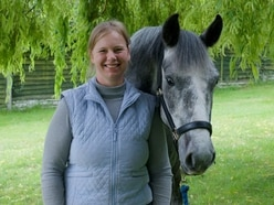 What it's like to be a horse physiotherapist