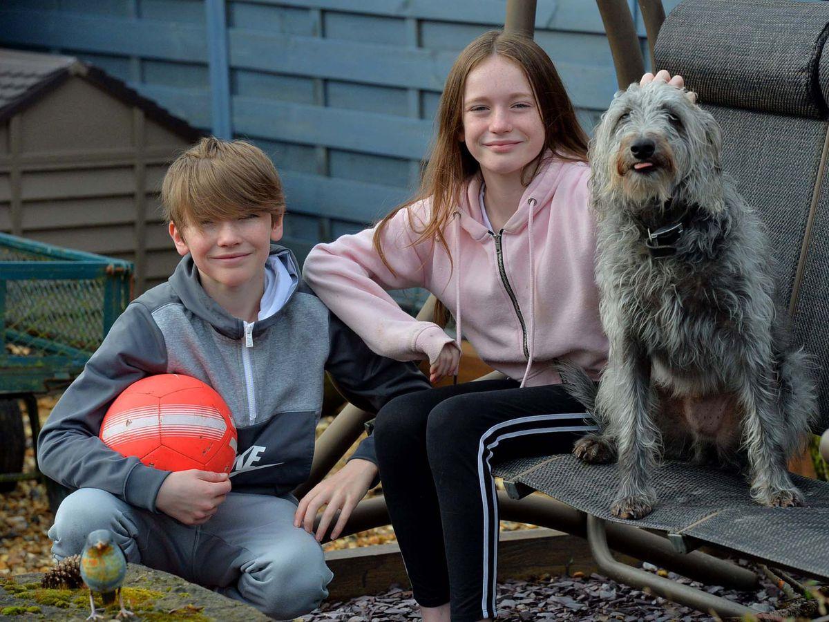 Jen Park,10, and James Park, 12, from Porthywaen, Oswestry
