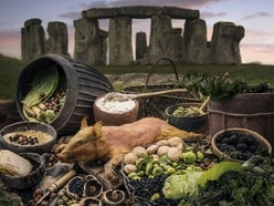 Stonehenge builders' diet habits revealed at exhibition