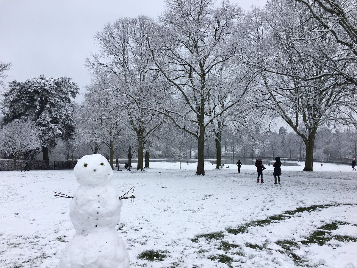 Snow in the Quarry Park, Shrewsbury. Photo: Kath @Crescent_Cakes