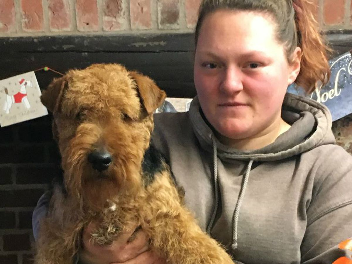 Bruce with kennel worker Charlotte Weaver