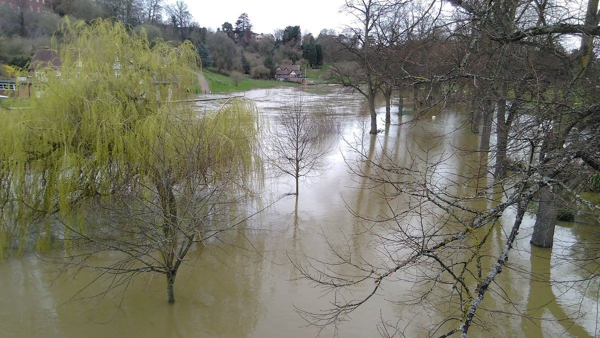 Tim King took these photos of flooding in the Quarry Park, Shrewsbury, on Monday