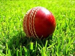 Matt Simmonds shines as wickets tumble
