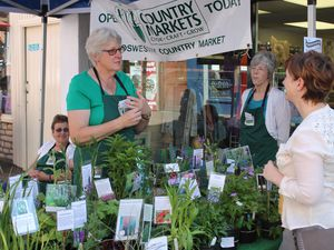 Speciality events are returning to Oswestry's market