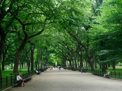 Woman charged after alleged racist confrontation in Central Park