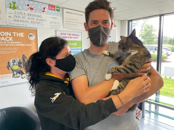 Forbes the cat is reunited with his owners