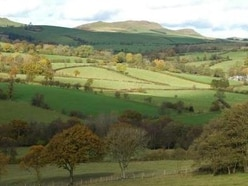 Call to scrap wind farm plans as inquiry to begin